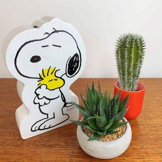 Large Snoopy Money Box