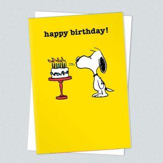 Snoopy birthday cake card