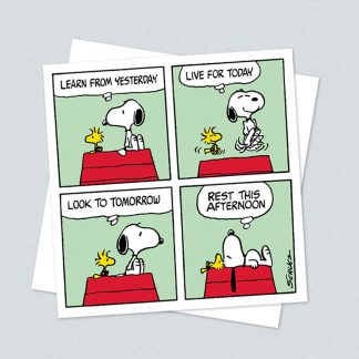Snoopy square learn card