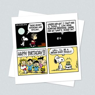 Snoopy square secret mission card