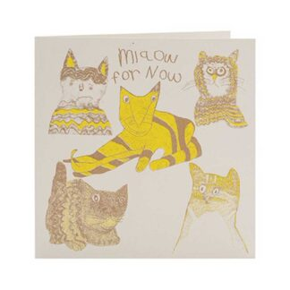 Miaow for Now Card